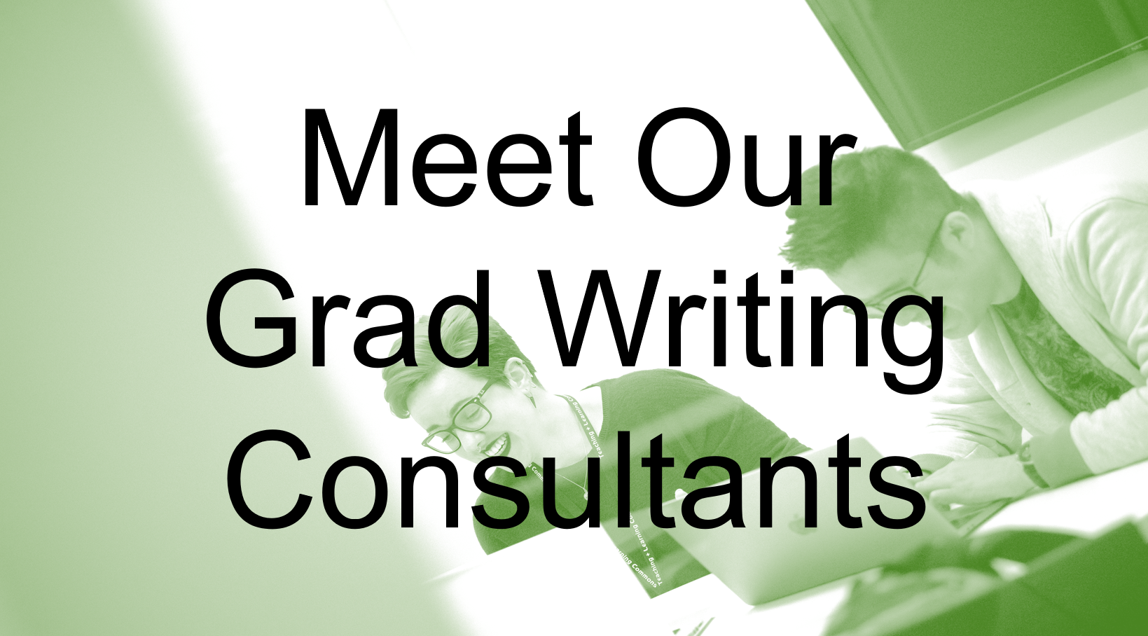 Meet Our Grad Writing Consultants textbox on green background