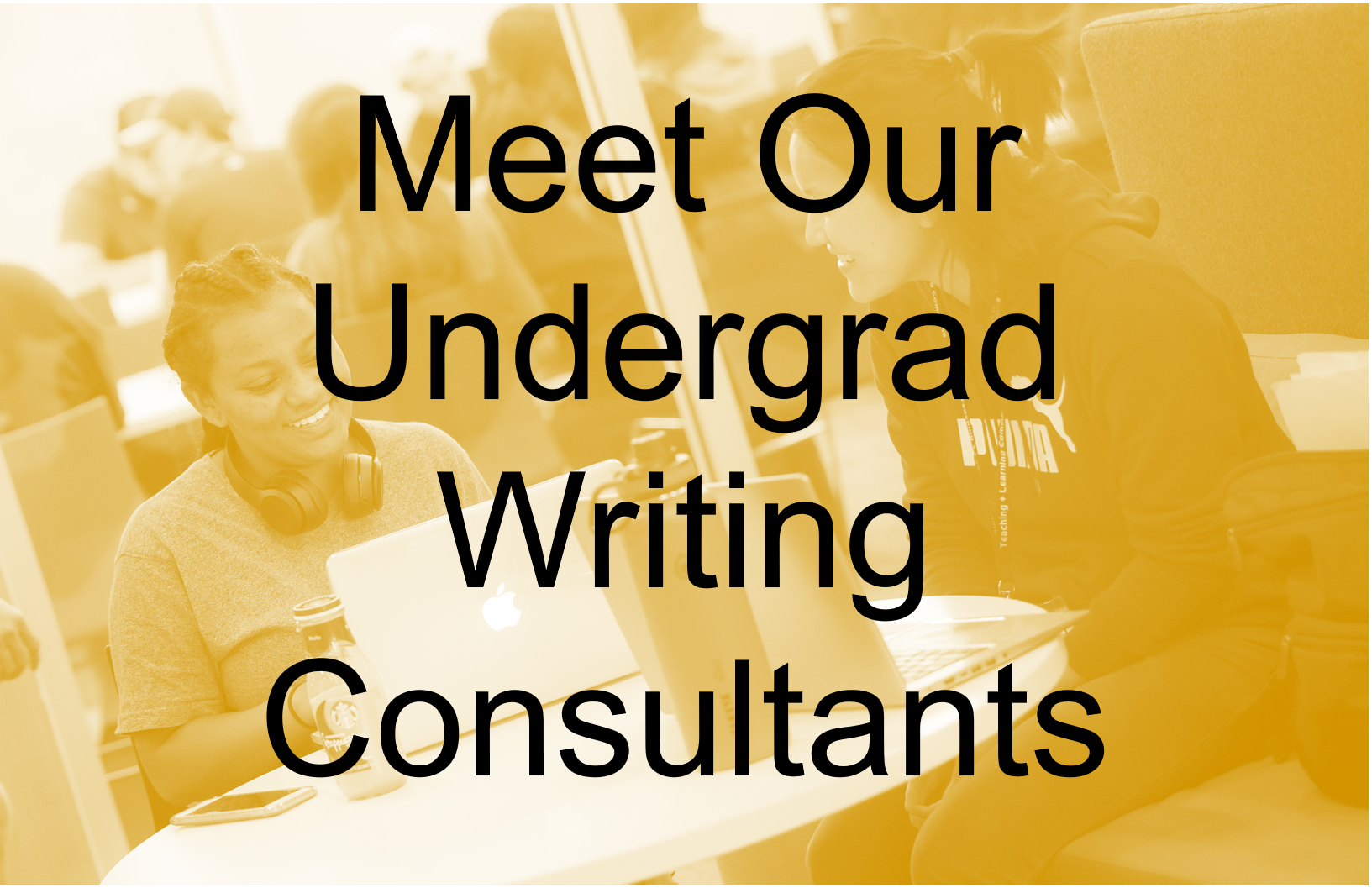 """Meet Our Undergrad Writing Consultants"" textbox on yellow background"